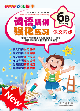 Top Mark in Chinese 6B ( Primary 6 )